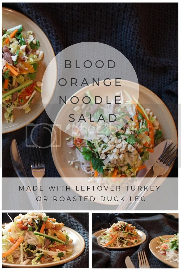photo Blood Orange Noodle Salad_zps5ee5catj.jpg