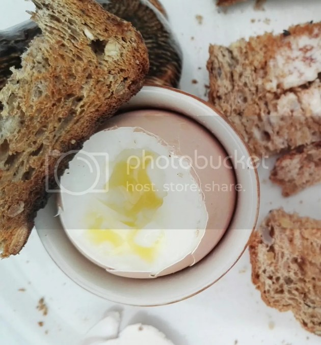 photo How to Cook Eggs 4_zpspizdt17c.jpg