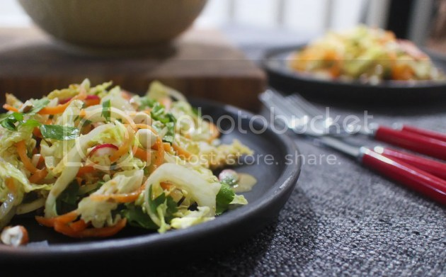 photo Satay Veggie Salad 13_zps3xcs4eoo.jpg
