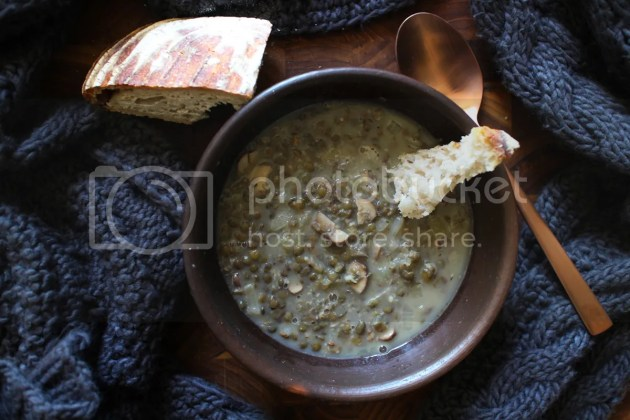 photo Vegan Mushroom and Lentil Soup 8_zpsdzcibo5b.jpg