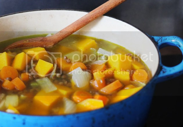 photo Veggie Squash Stew 6_zpssdhmljya.jpg