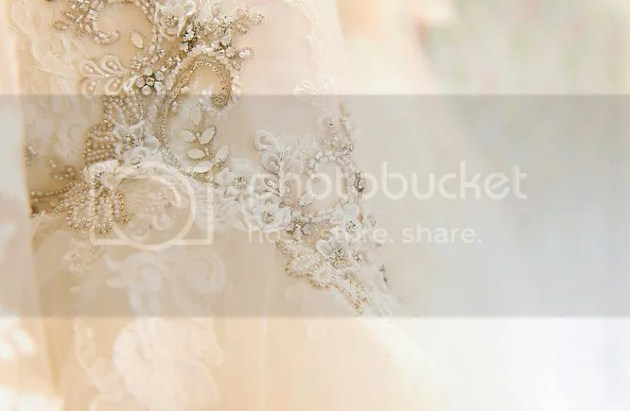 photo Silver Sixpence Bridal 11_zpsejcz4yef.png