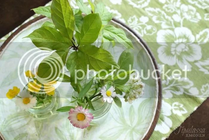 pilttipurkit, luonnonkukat, kukkakimppu, kukka-asetelma, kesäkukat
