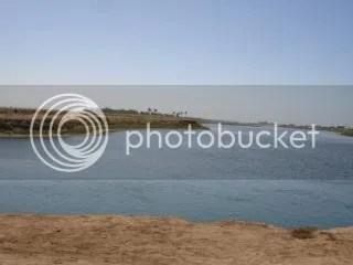photo 29161_397553376174_3176620_n_zpsa86ff428.jpg