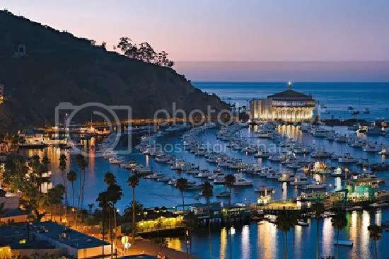 photo catalina-island-visitors_zps04da88f0.jpg