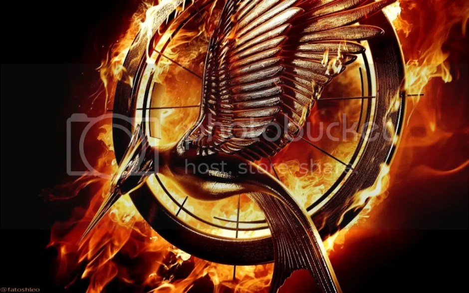 photo hunger-games-catching-fire_zps115d0e81.jpg