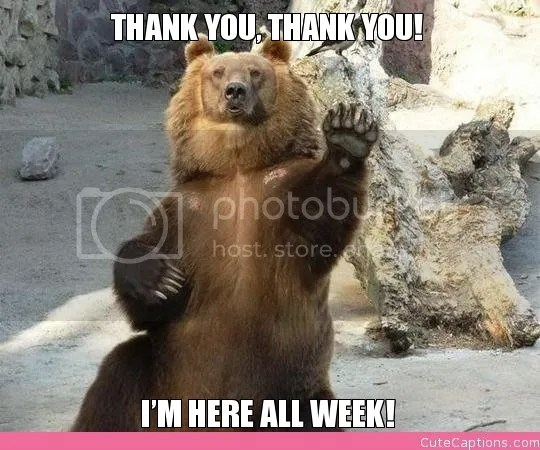 "bear w meme text ""thank you thank you i'm here all week"""