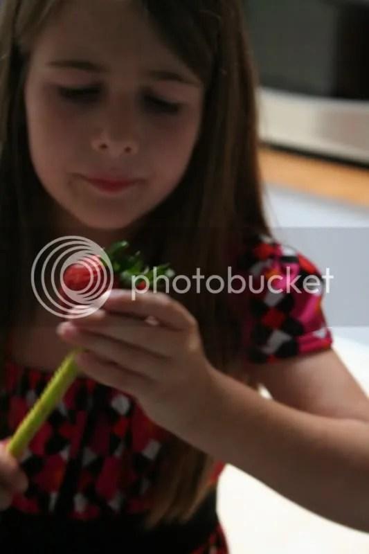 MOTS cores berries
