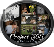Project 365 button designed by http://richgift.blogspot.com