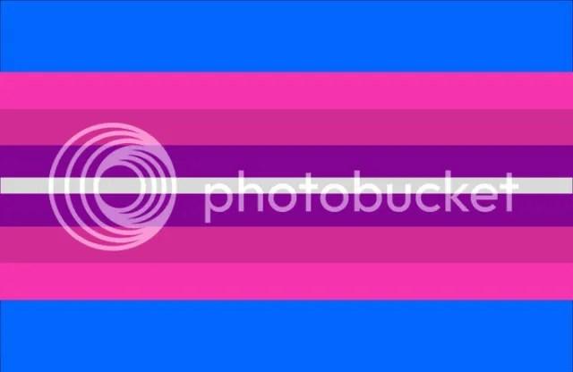 Trans flag.