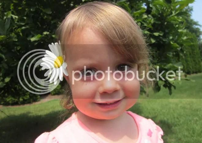 photo flower_zps619f1488.jpg