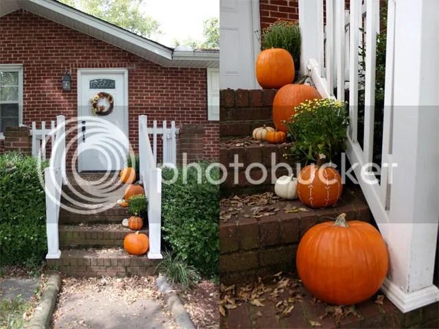 photo Fall1_zps494b3abd.jpg