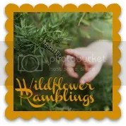 Wildflower Ramblings