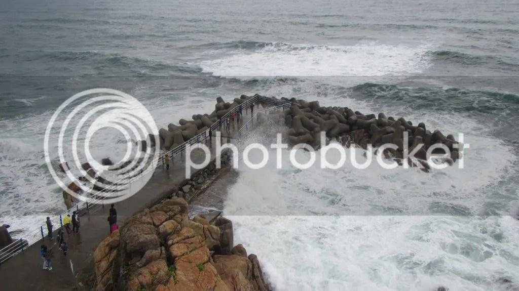 photo IMG_2088_zps83c58401.jpg