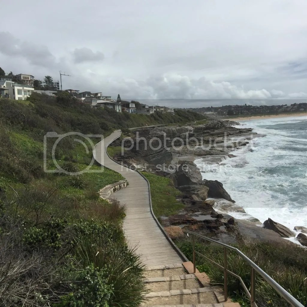 photo 8 Curl Curl Beach South_zps0n2j8ooe.jpg