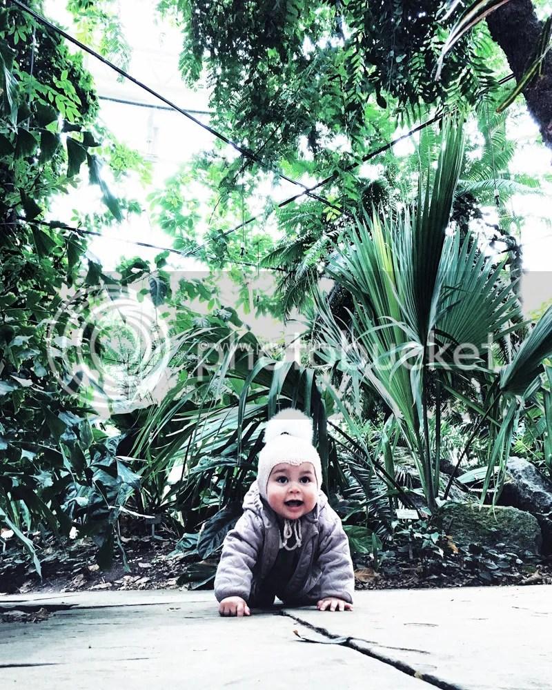 photo F i palmehuset_zpszni8gu4m.jpg