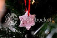 Glitter Ornament photo DSC_0136_zps0ab5e663.jpg