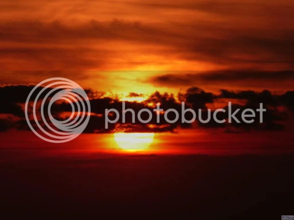 Photo P2420036.jpg