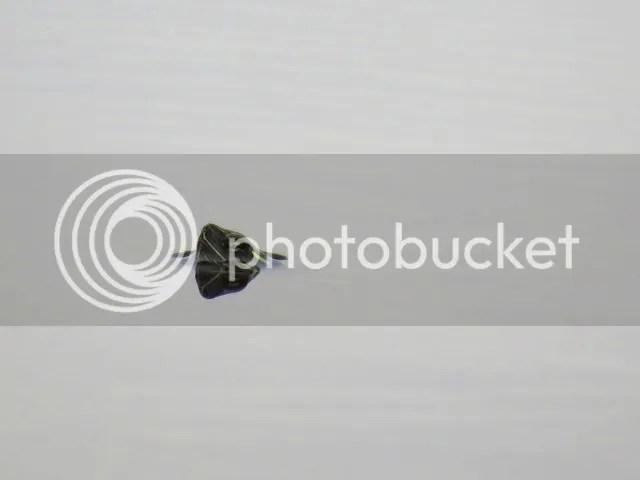 Curious Dollar Lake Turtle photo IMG_4168_zps0bd1c33c.jpg