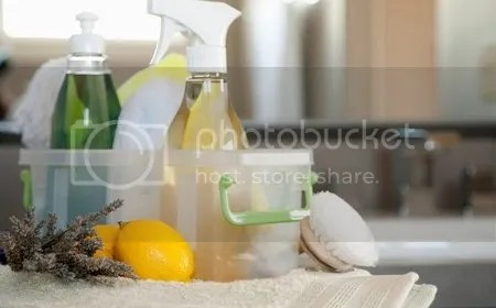 productos de limpieza biodegradables