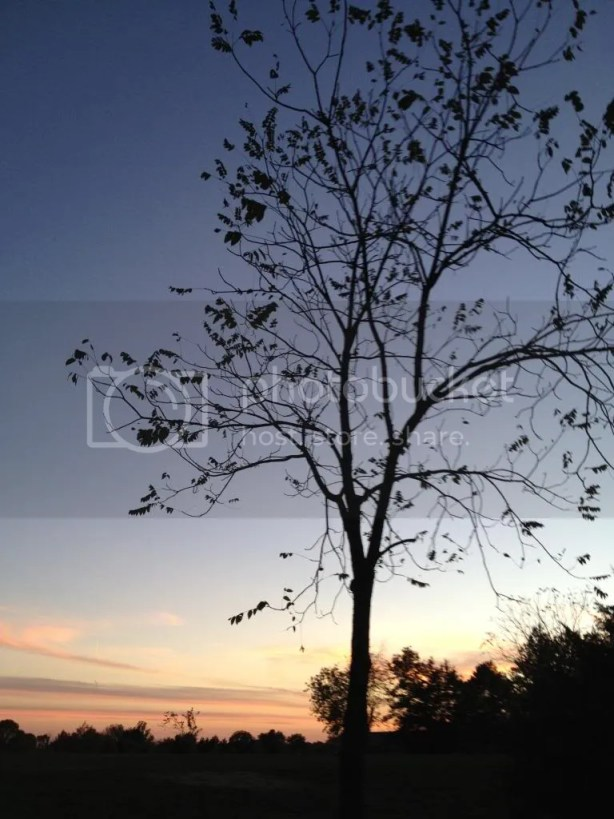 photo iphone1028059_zpscc22a0c0.jpg