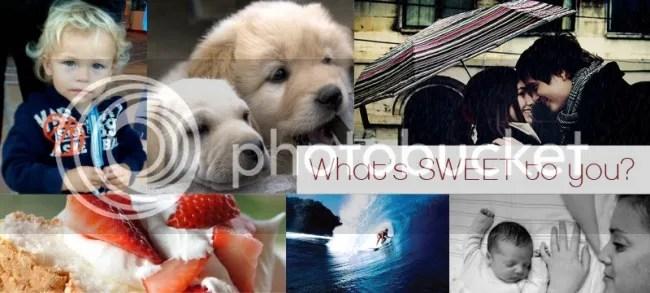 photo sweet-world-banner-800x360-e1374094856417_zps137f7b6a.jpg
