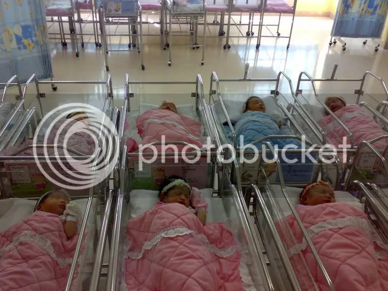 kumpulan bayi