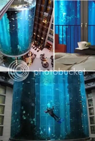 various view of the AquaDom