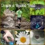 Down a Rabbit Trail