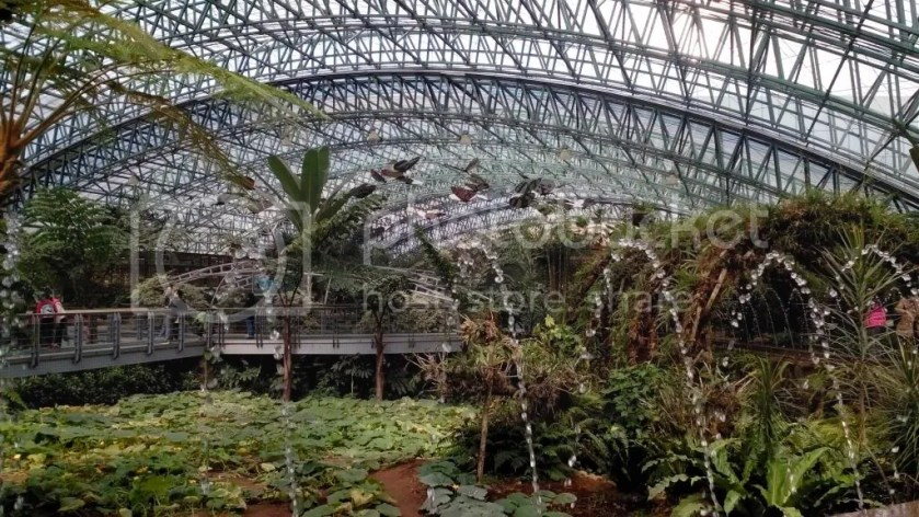 四季植物馆2