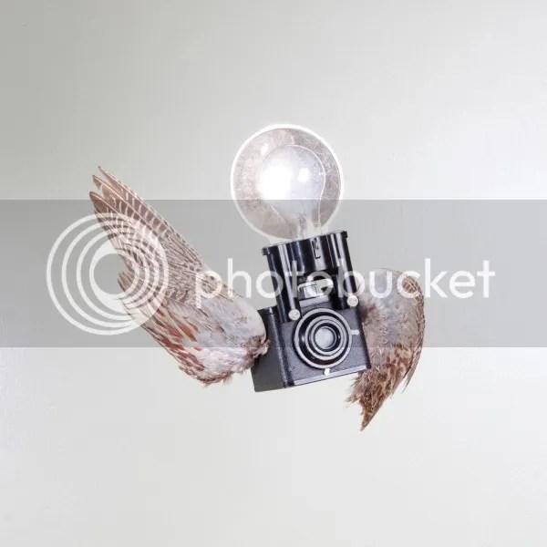 photo PaulOctavious-BirdsOfAperture2_zpsd5a10f37.jpeg