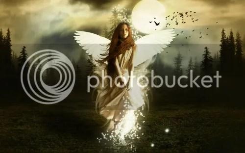 https://i2.wp.com/i1338.photobucket.com/albums/o688/EsmeMoirai/c8e98562-d121-41cc-ab7a-115cdd7d9bd6_zpsf530cabd.jpg