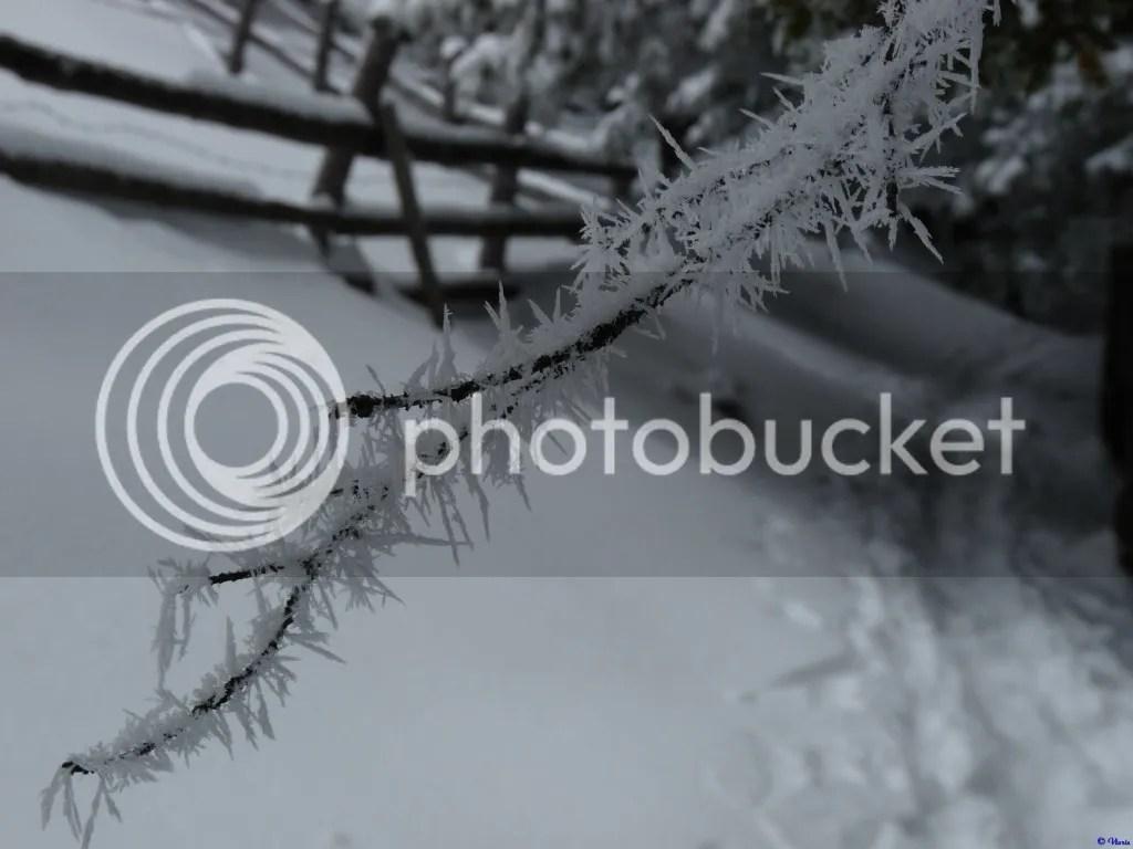 photo P303_077.jpg