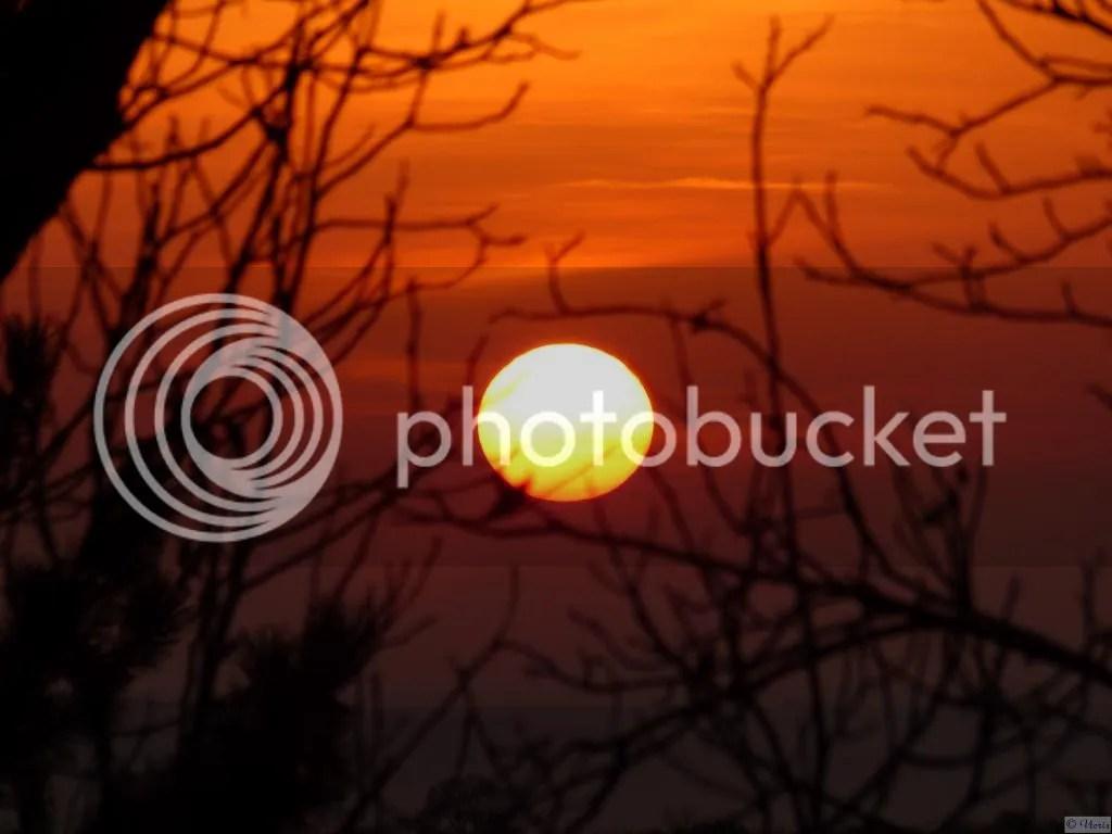 Photo P1830326.jpg