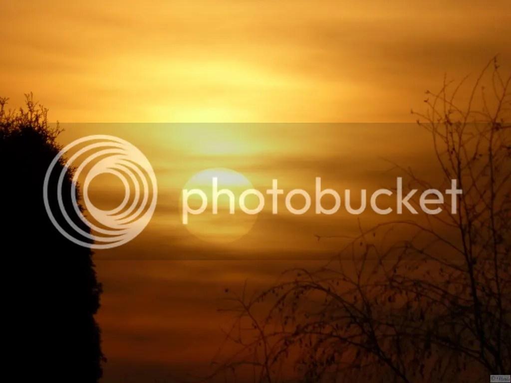 photo P1840035.jpg