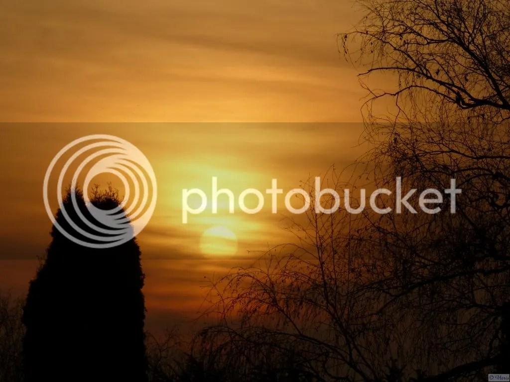 Photo P1840040.jpg