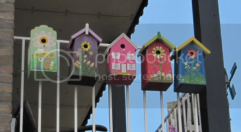 IMG_8918.jpg vogelhuisjes