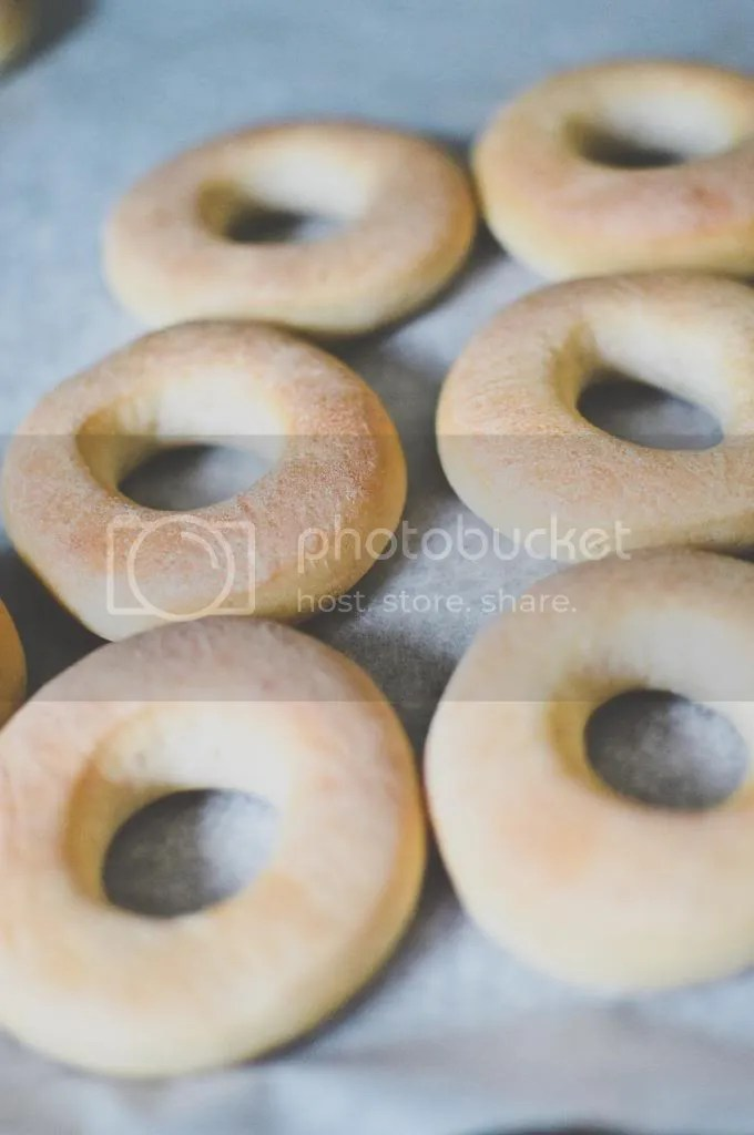 Freshly Baked Donuts