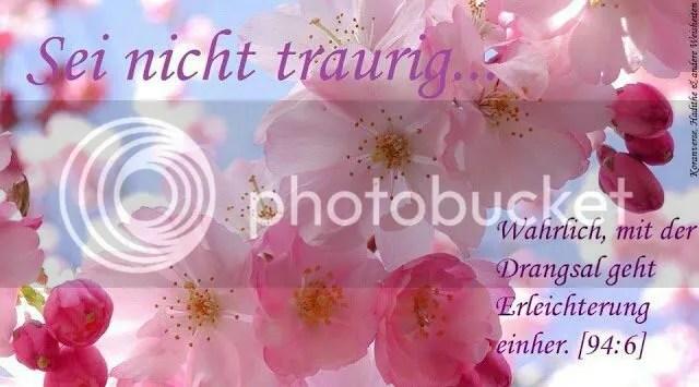 photo 537329_145629978927178_1261239372_n_zpsbb4573f3.jpg