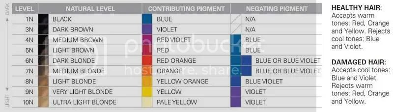 Companies Level System & Countering Pigment Charts