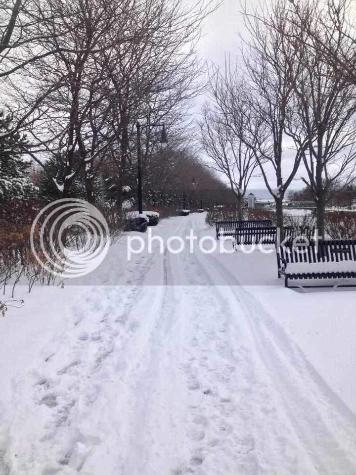 Brockport in winter is so pretty photo 10924723_10205760536993521_2337256893094037634_n.jpg