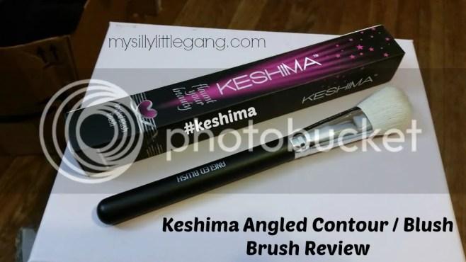 keshima-angled-brush