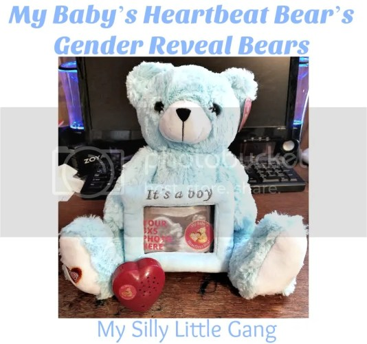 gender reveal bear
