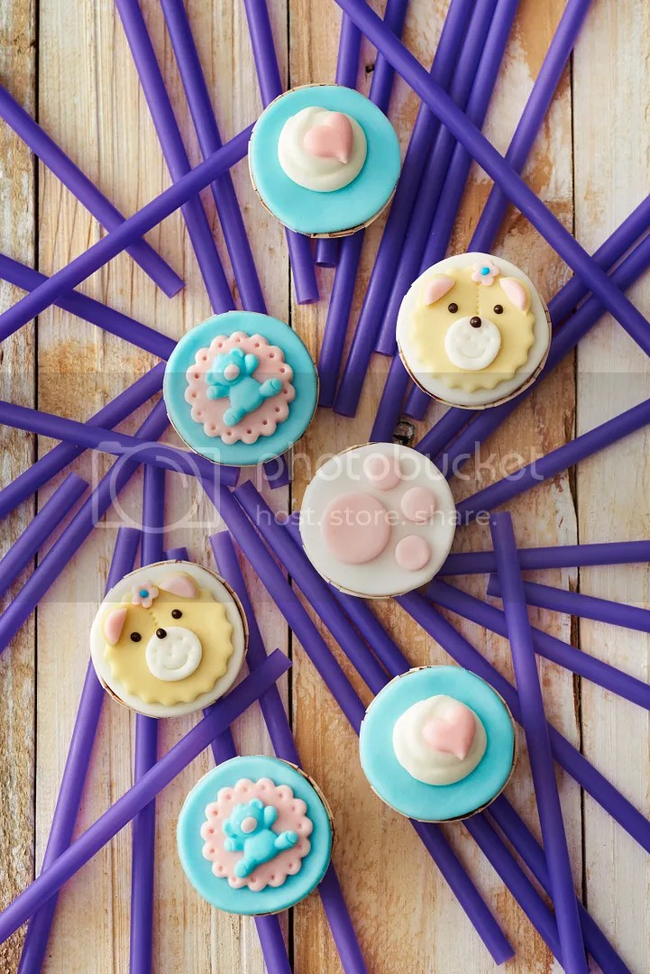 photo Baby Bear Cupcakes_zps9erpxcod.jpg