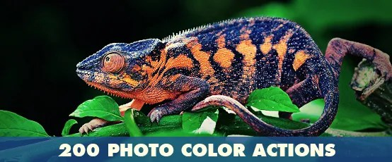 Elemental Photoshop Action - 129