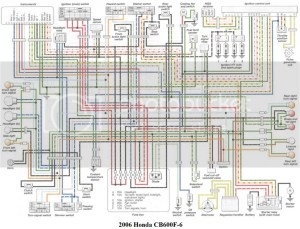 2006 Honda 599 Wiring Diagram Photo by ShaunBPutman