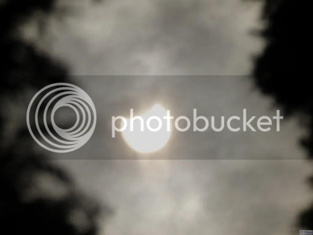 photo P2660811.jpg