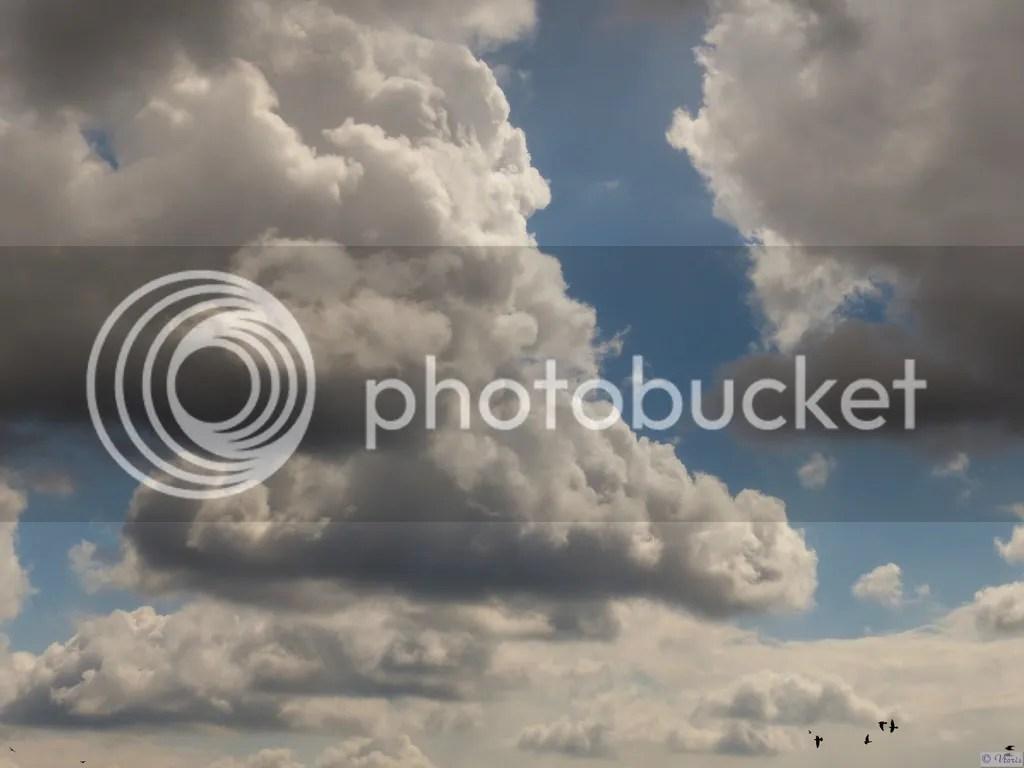 photo P2680554_mod.jpg