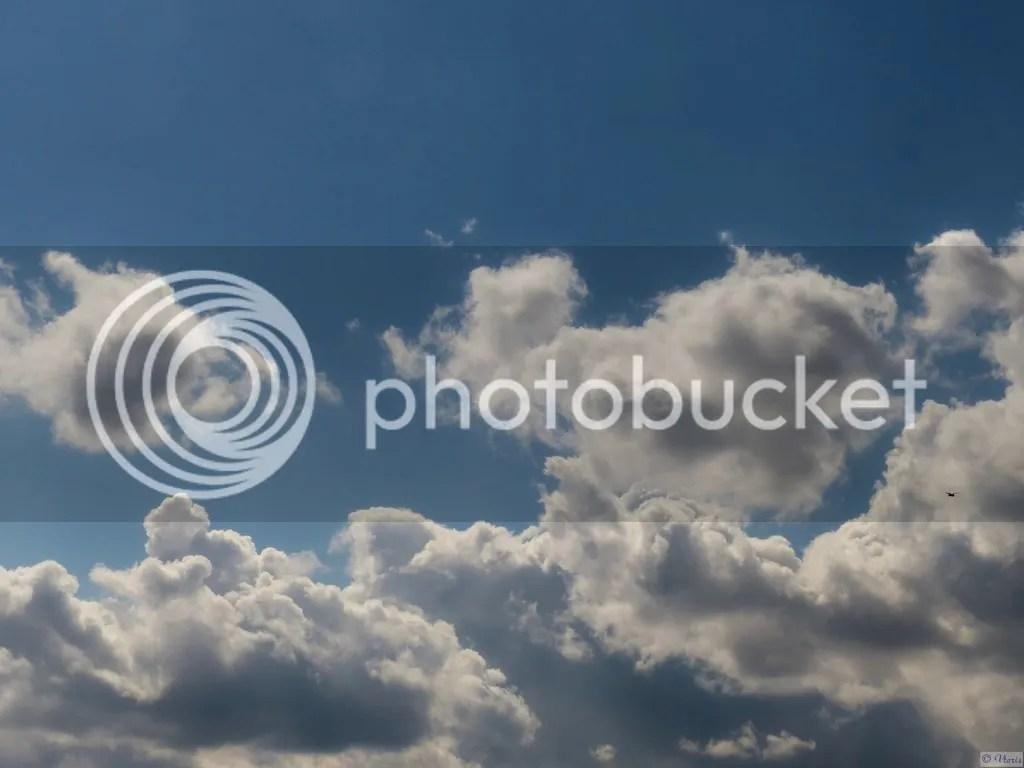 photo P2680581_mod.jpg