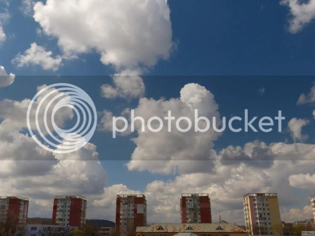 photo P2680594.jpg
